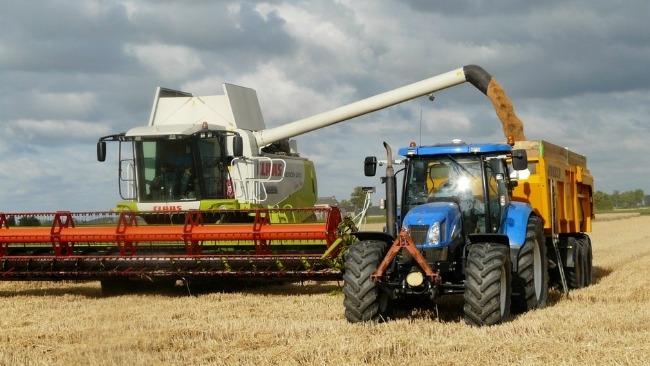 farming-business-market